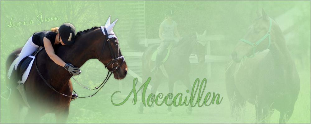 Moccaillen
