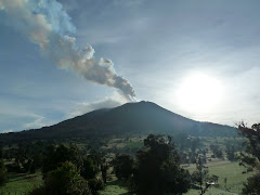 Mi viaje a Costa Rica (24-07-2010)