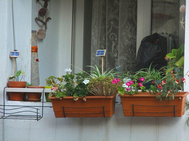 Chậu móc treo chậu hoa dài thông minh trang trí khung cửa sổ