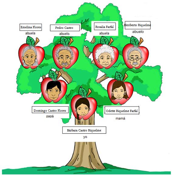 Ejemplos de arbol genealogicos para niños - Imagui