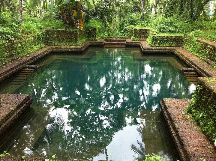 house ponds and swimming pools