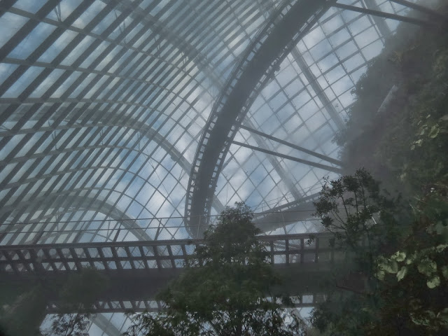 Gardens by the bay cloud forest