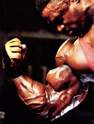 Ronnie Coleman Bicep