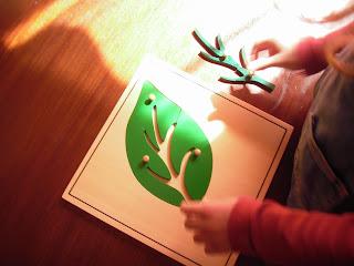 puzzle botánica montessori - hoja