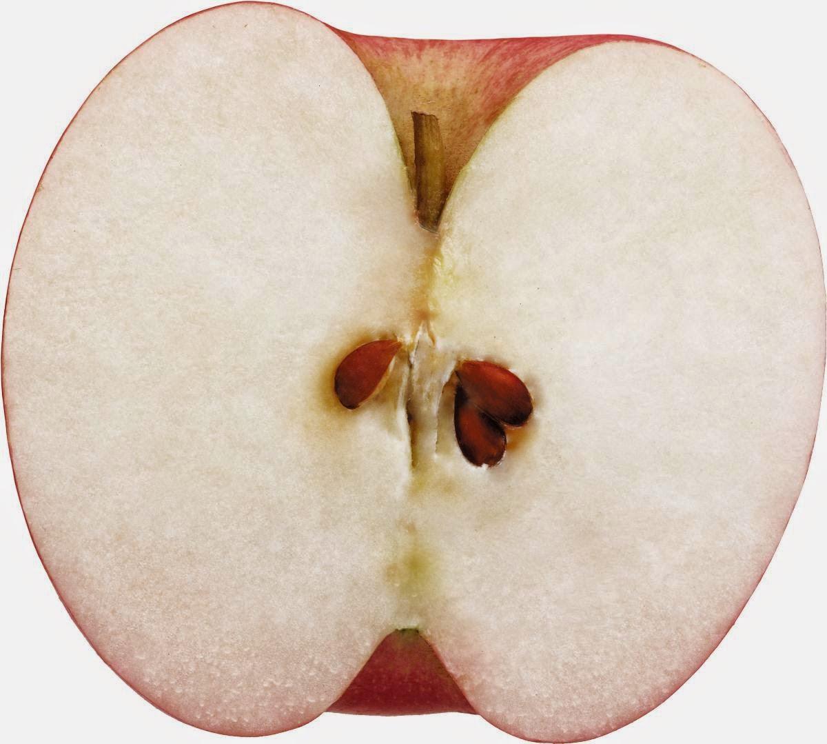 Manfaat dan Kandungan Nutrisi Buah Apel