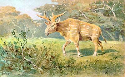 pliocene fauna Sivatherium