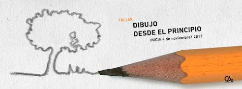DIBUJO DESDE EL PRINCIPIO // 4 de nov