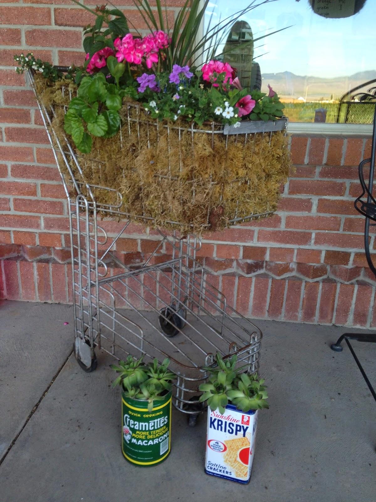 Pollyanna Reinvents Planting In Unusual Vintage