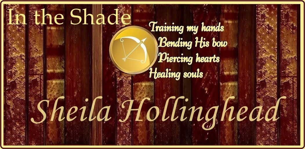 Sheila Hollinghead's In the Shade