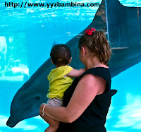looking Young families will love Sea Life Park in Hawaii