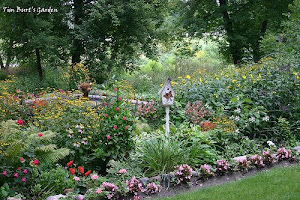 Pastor Tim's Garden