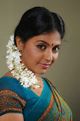 Anjali Beautiful Photos from SVSC-thumbnail-20