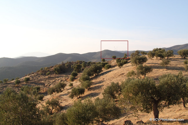 Olive groves with distant Aeolic energy turbines (marked)