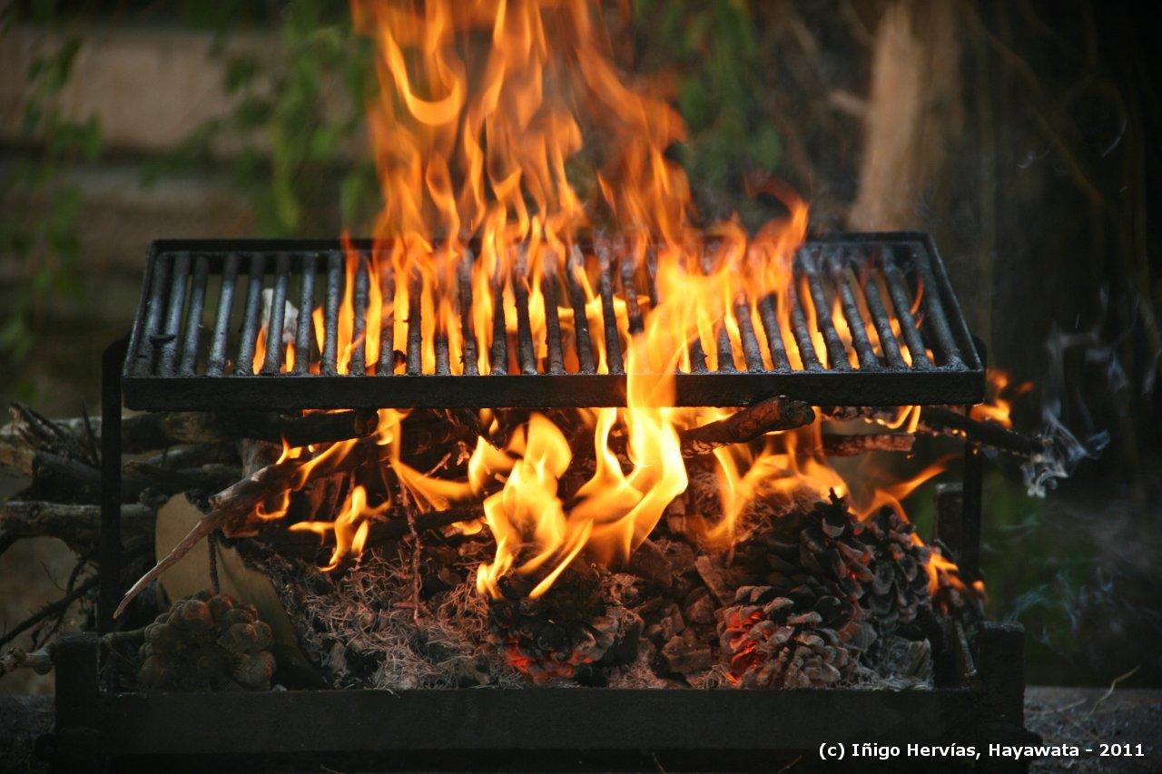 El blog de hayawata preparando la barbacoa for Parrilla para la casa
