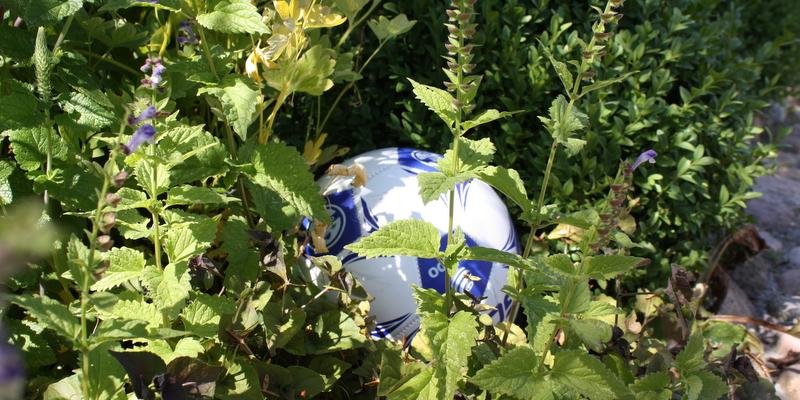 Boldspil i haven