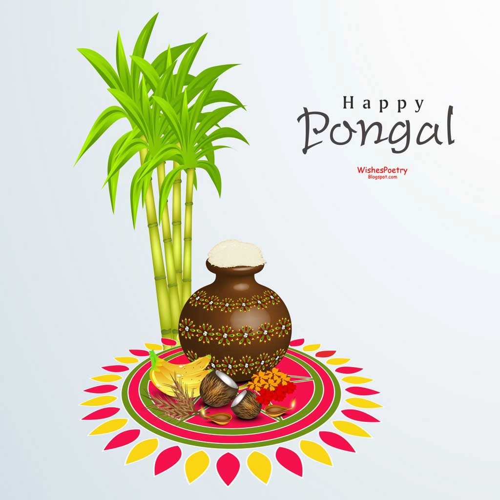 Pongal Wishes-Sayings-Qoutes 2014 & Wallpapers