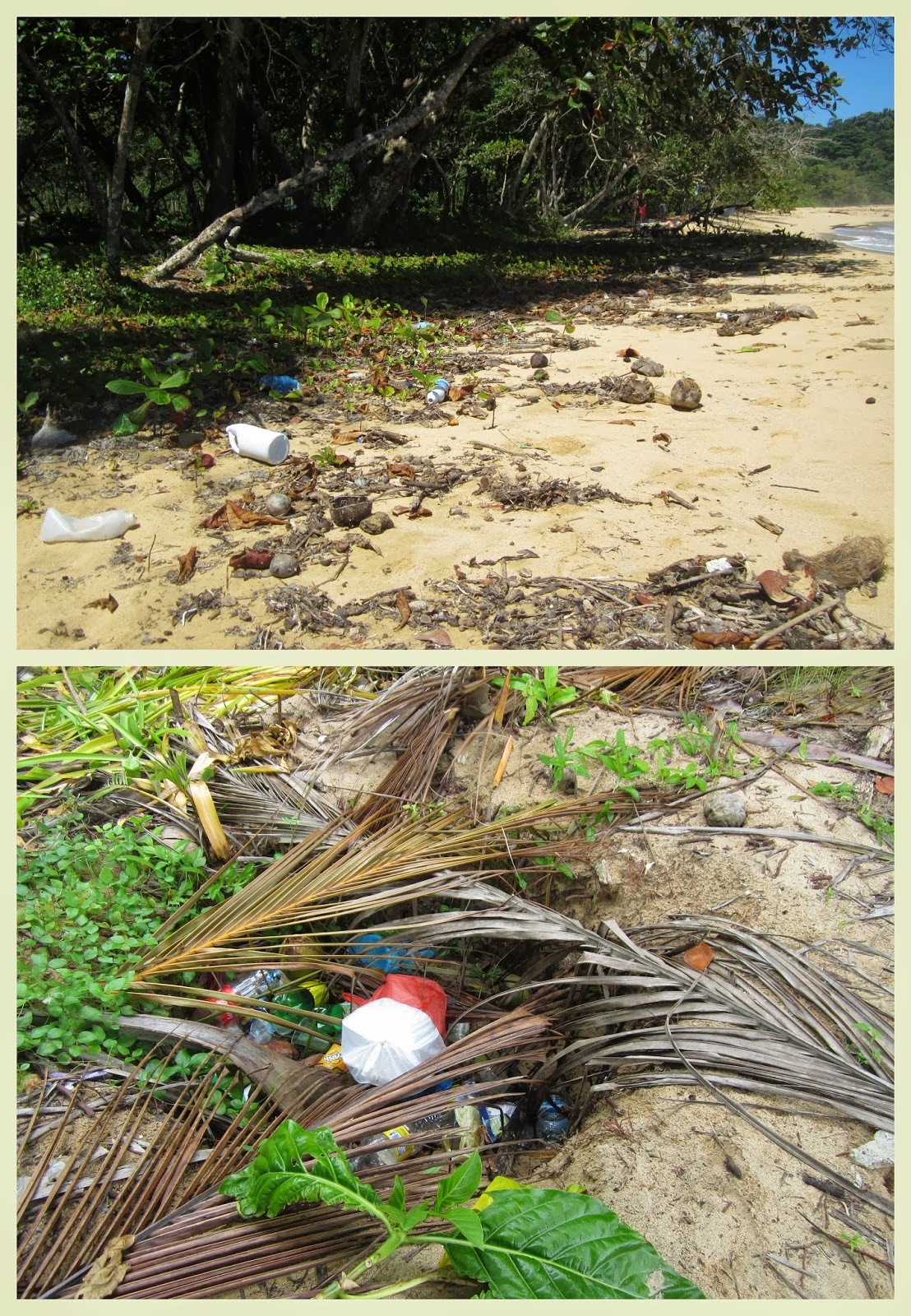 """basura en Bocas del Toro"""