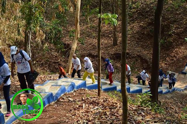alan santai keliling hutan sambil pungut sampah.