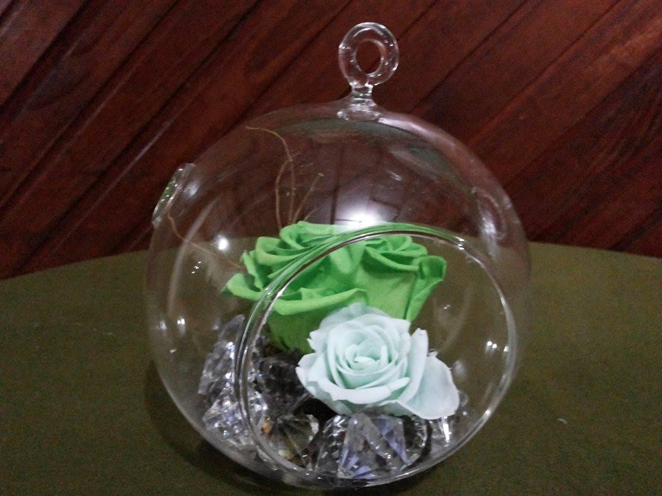 Rosas Naturales Preservadas Verdes y Menta ¡Duran 4 Años! Santa Ana, El Salvador