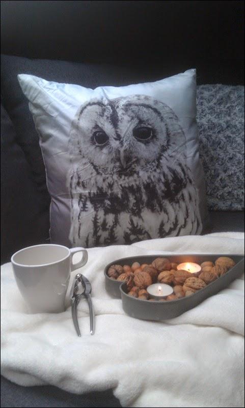 Poduszka z sową i nowa lampka.