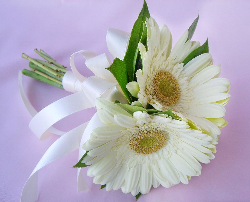 Wedding Bouquet Of Gerbera Daisies : Wedding flowers white gerbera daisy
