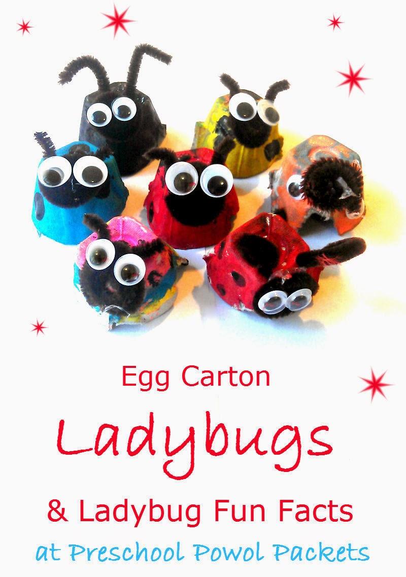 egg carton ladybug preschool craft u0026 ladybug fun facts