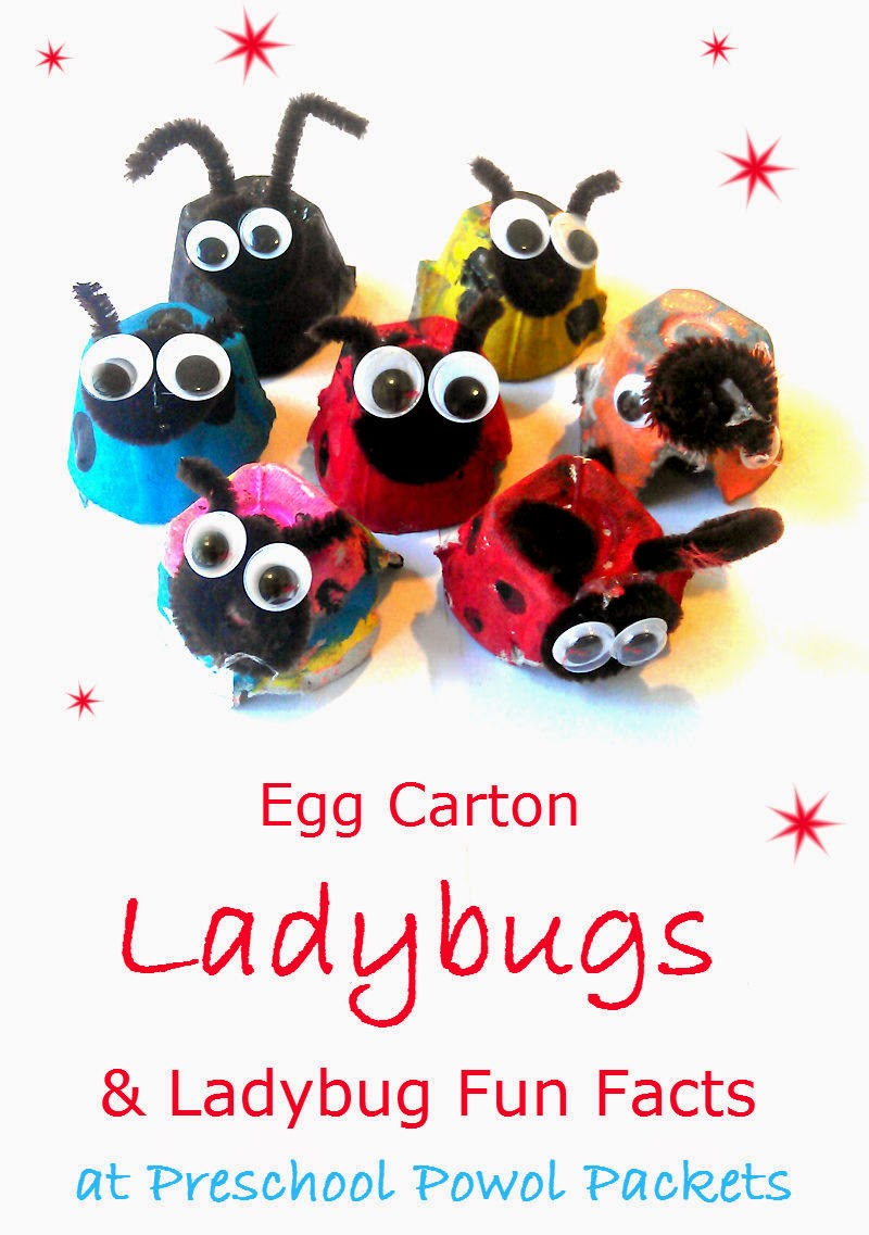 10 fascinating facts about ladybugs for kids