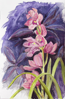 Kath Schifano, orchid painting