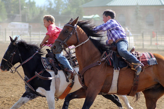 the final stretch of the crepe paper race at the Sheridan Elk's Youth Rodeo