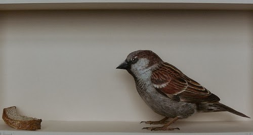 09-House-Sparrow-2-Johan-Scherft-Living-Paper-Birds-Sculptures-Watercolours-www-designstack-co