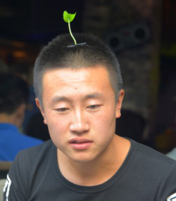 Chinese Sprout Trend, 2015