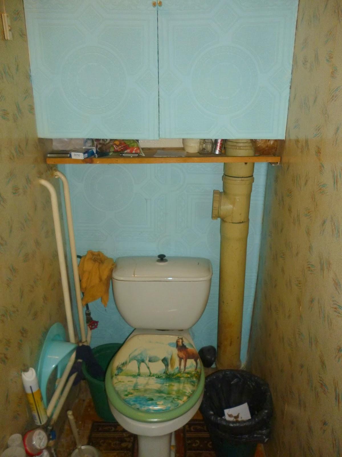 Бюджетный ремонт туалета своими руками фото