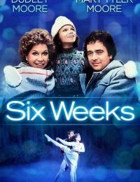 Six Weeks   Bmovies