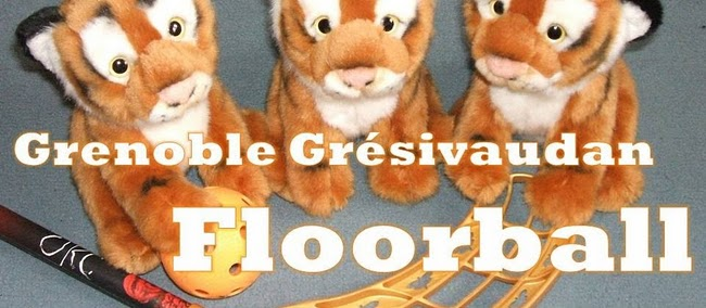 REDIRECTING to Gresivaudan Floorball