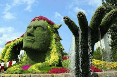 Amazing Garden Stills
