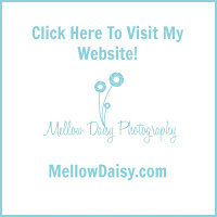 View My Full Gallery