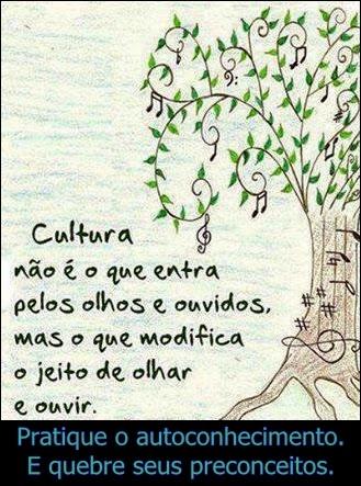 Cultura não é o que entra pelos olhos e ouvidos, mas o que modifica o jeito de olhar e ouvir.