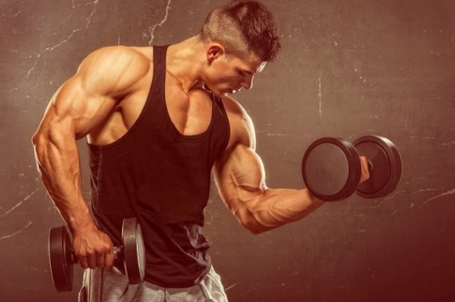 Know How to get Bigger Arms