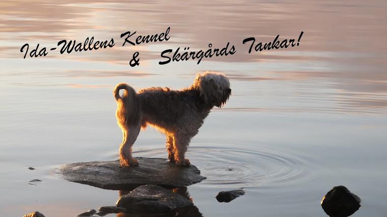 IDA-WALLEN`S KENNEL/Skärgårds tankar