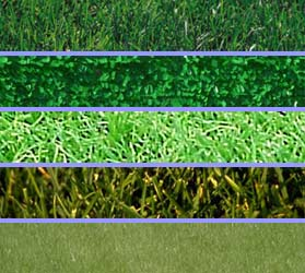 Preferred Landscape And Lighting Which Type Of Grass Is Right For You