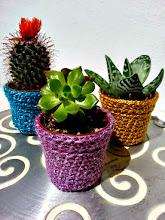 Macetero cactus con imán a crochet
