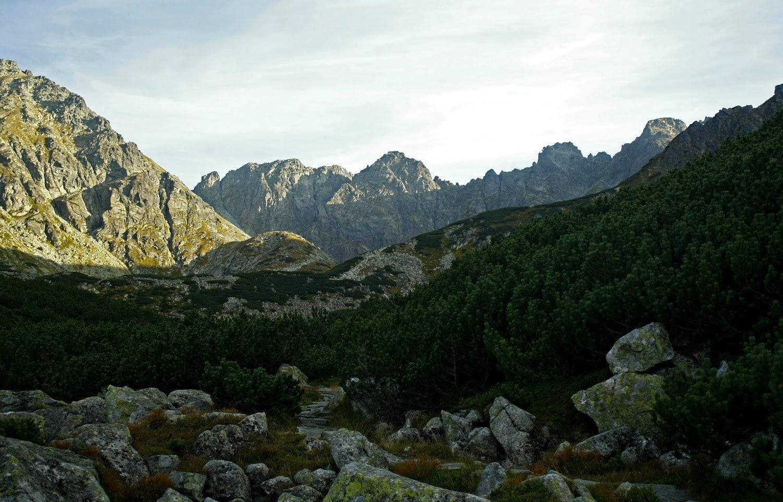 Dolina Pańszczyca