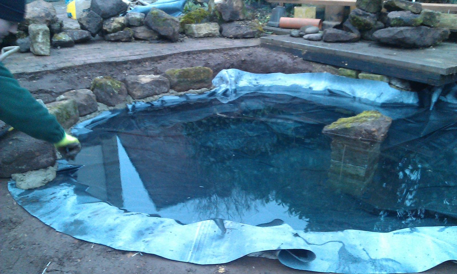 Chase gardening and landscaping re positioning a pond for Pond fish wanted