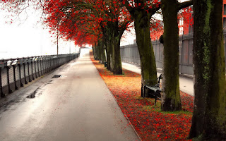 Autumn Wallpaper - Free Download Wallpapers