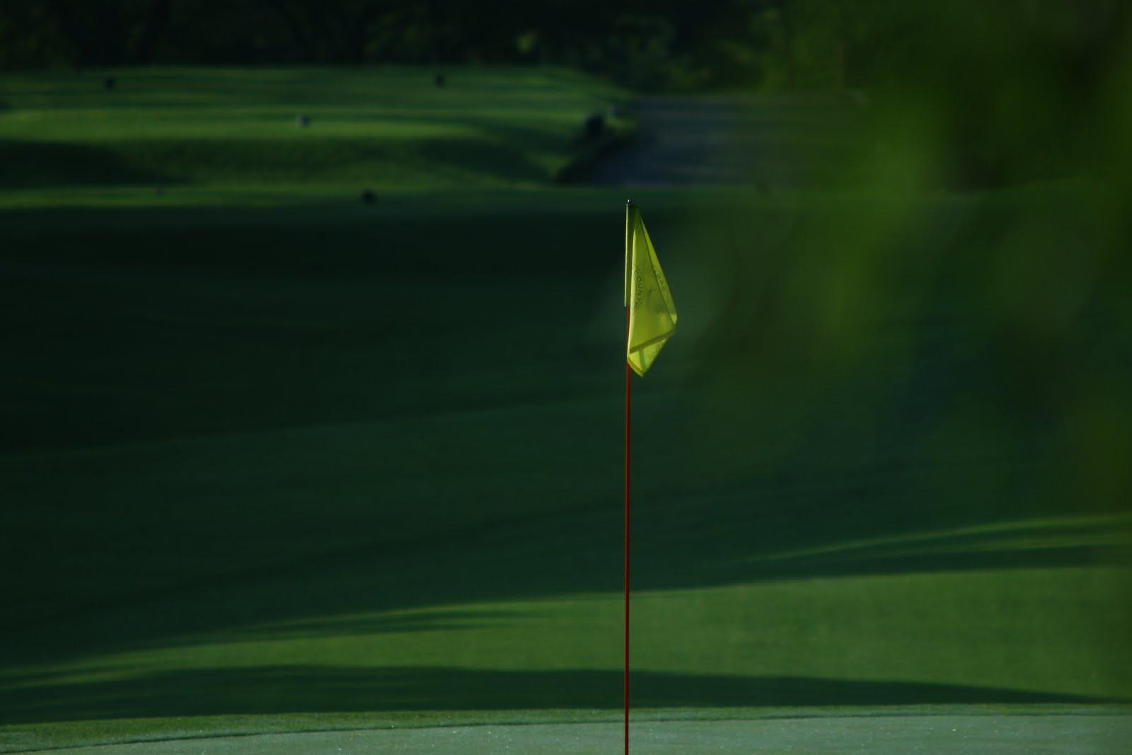 ゴルフcaféスイング分析