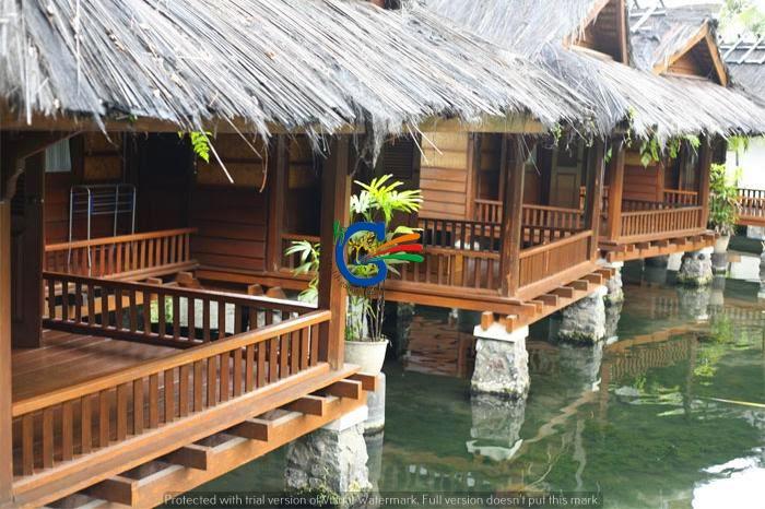 Paket wisata tahun baru 2015 (40 orang)