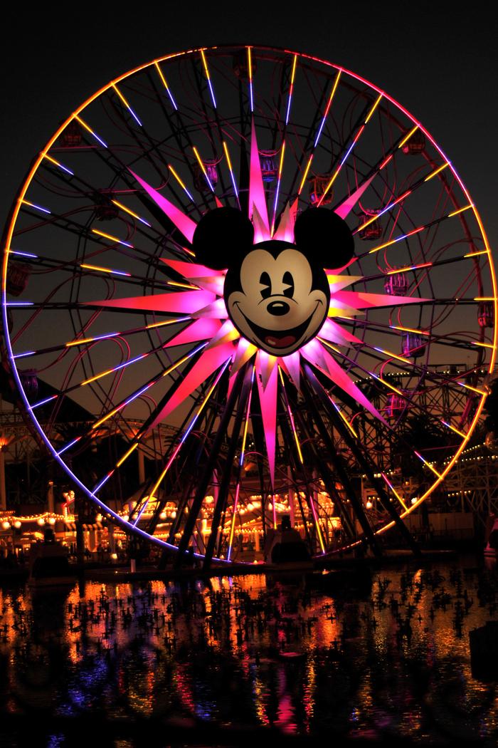 5 Reasons to say yes to Adventure, DisneyLand, California Adevnture
