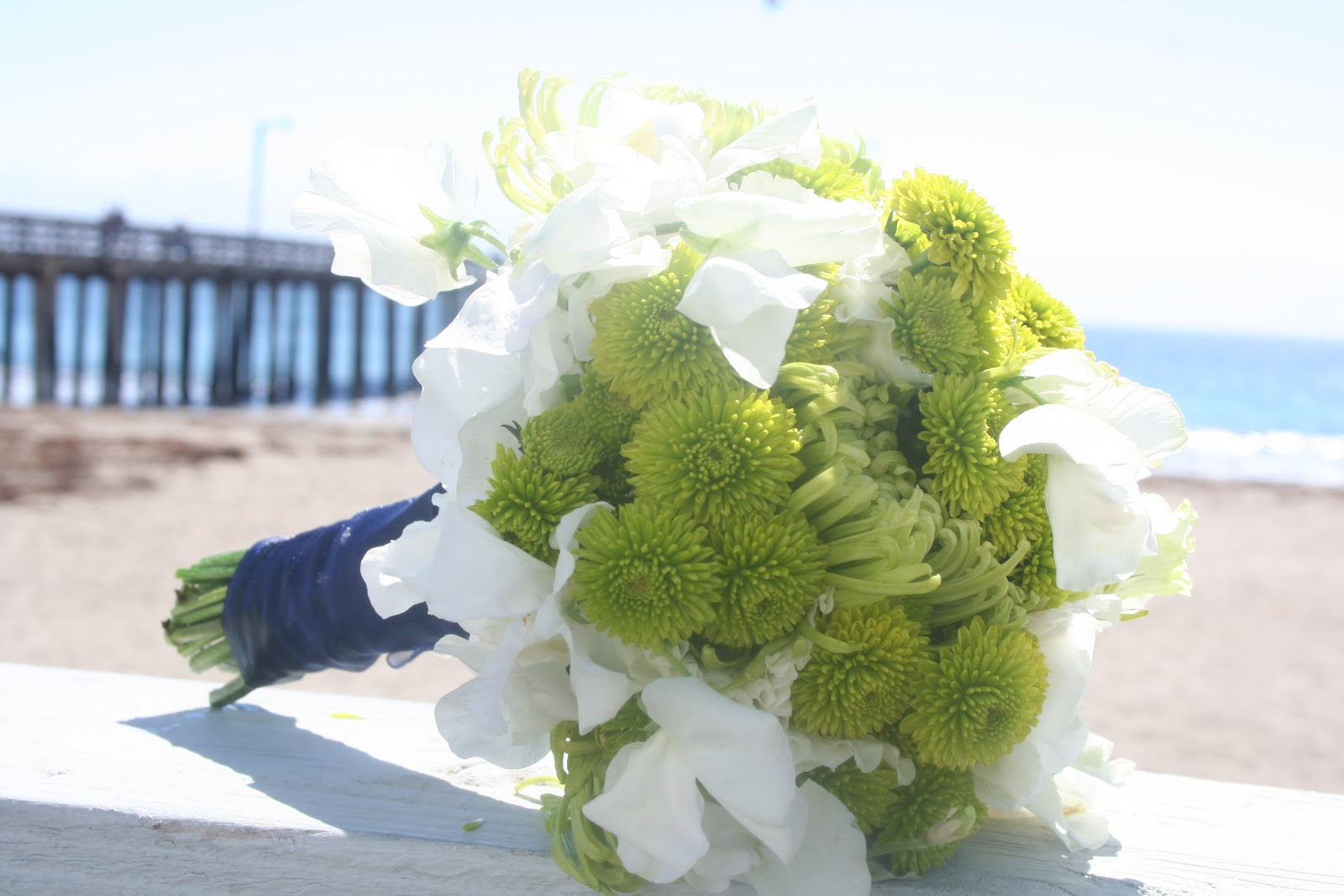 Sprigs Beach Wedding