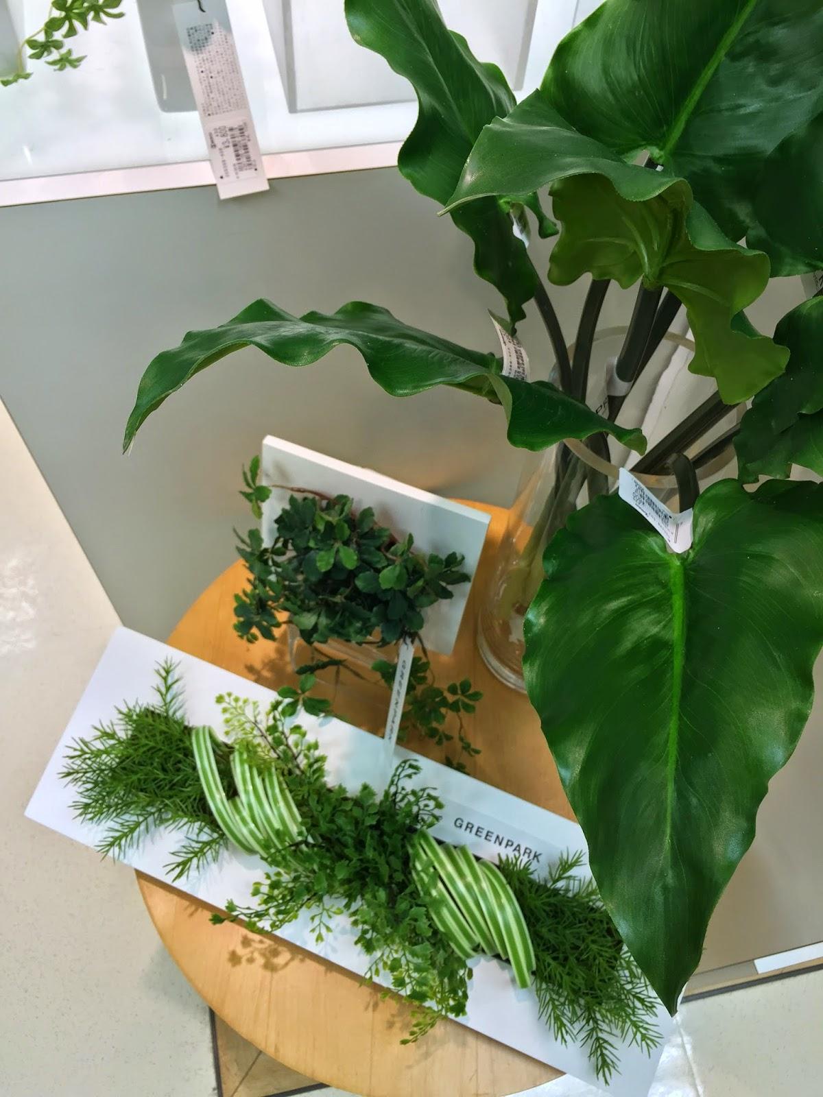 観葉植物 GREENPARK