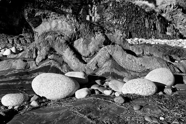 Nova Scotia; Gaff Point; Rocks; Dragon
